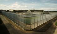 Centres de détention d'Argentan et Centre pénitenciaire de Lorient